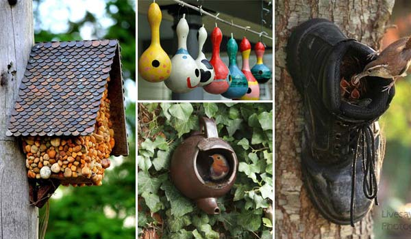 diy-bird-houses-10