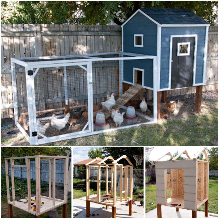 diy-chicken-coops-3
