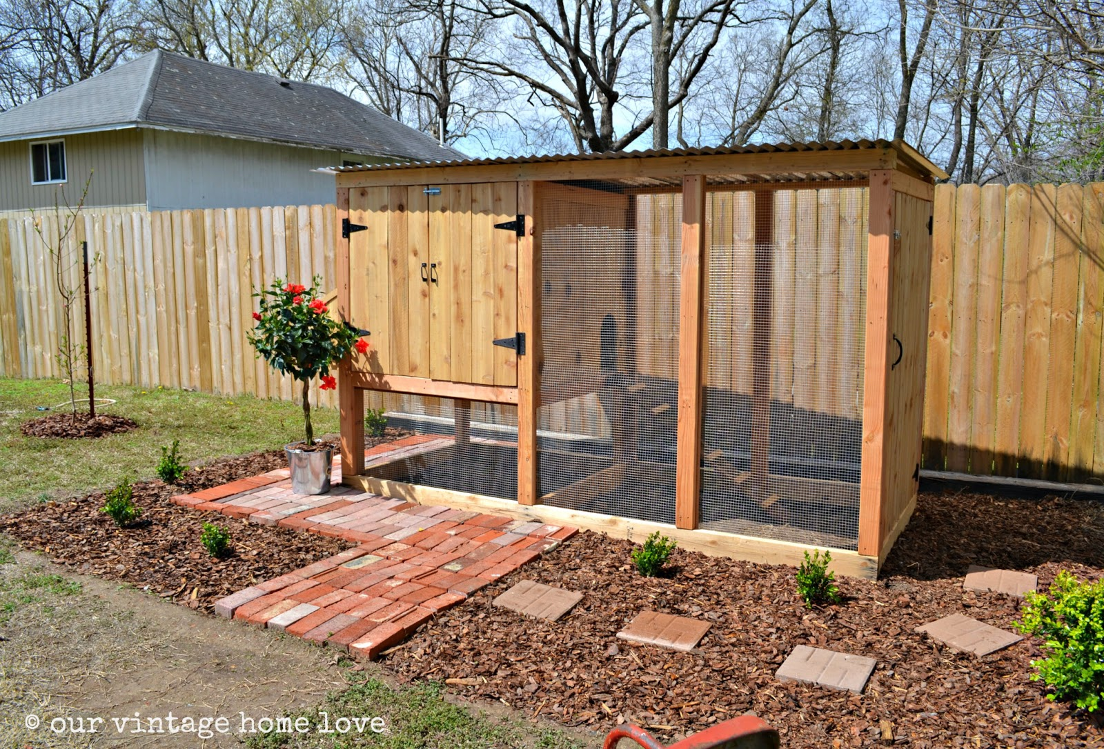 diy-chicken-coops-6