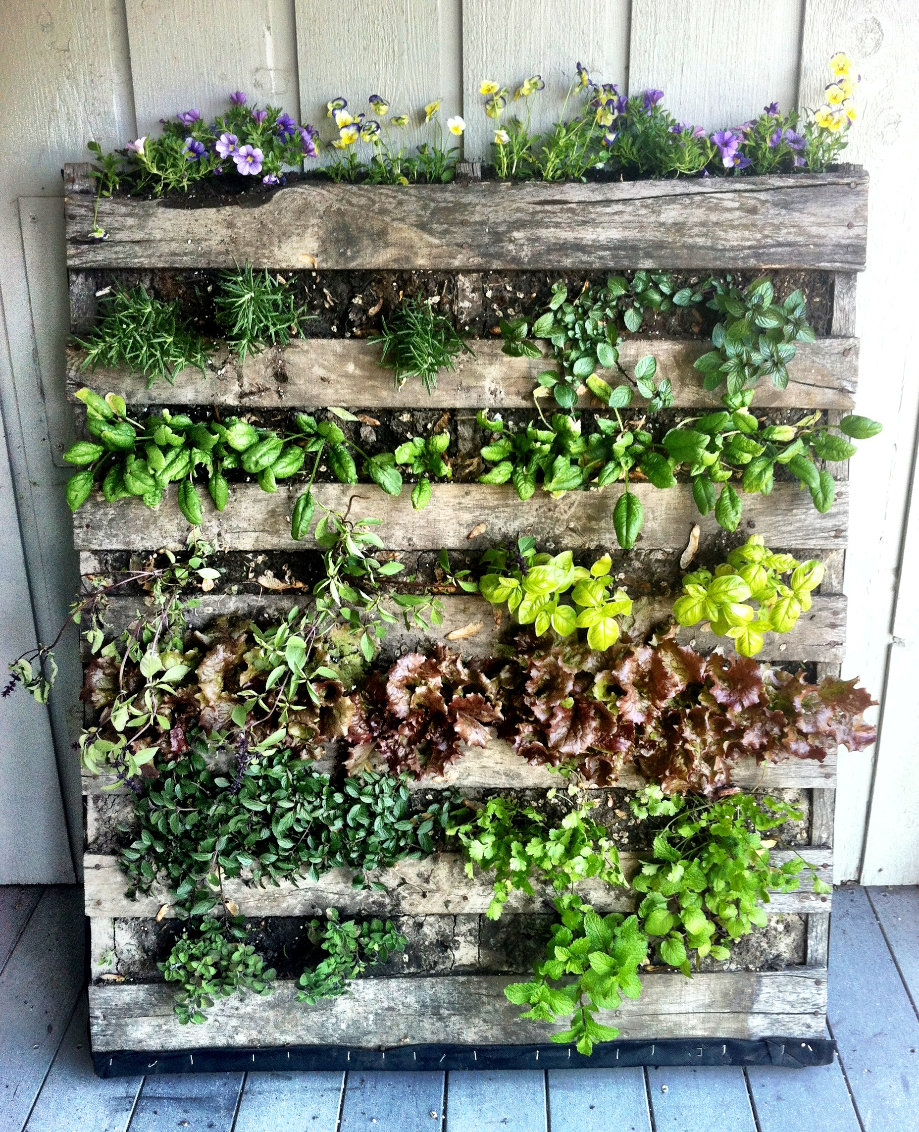 diy-garden-projects-8