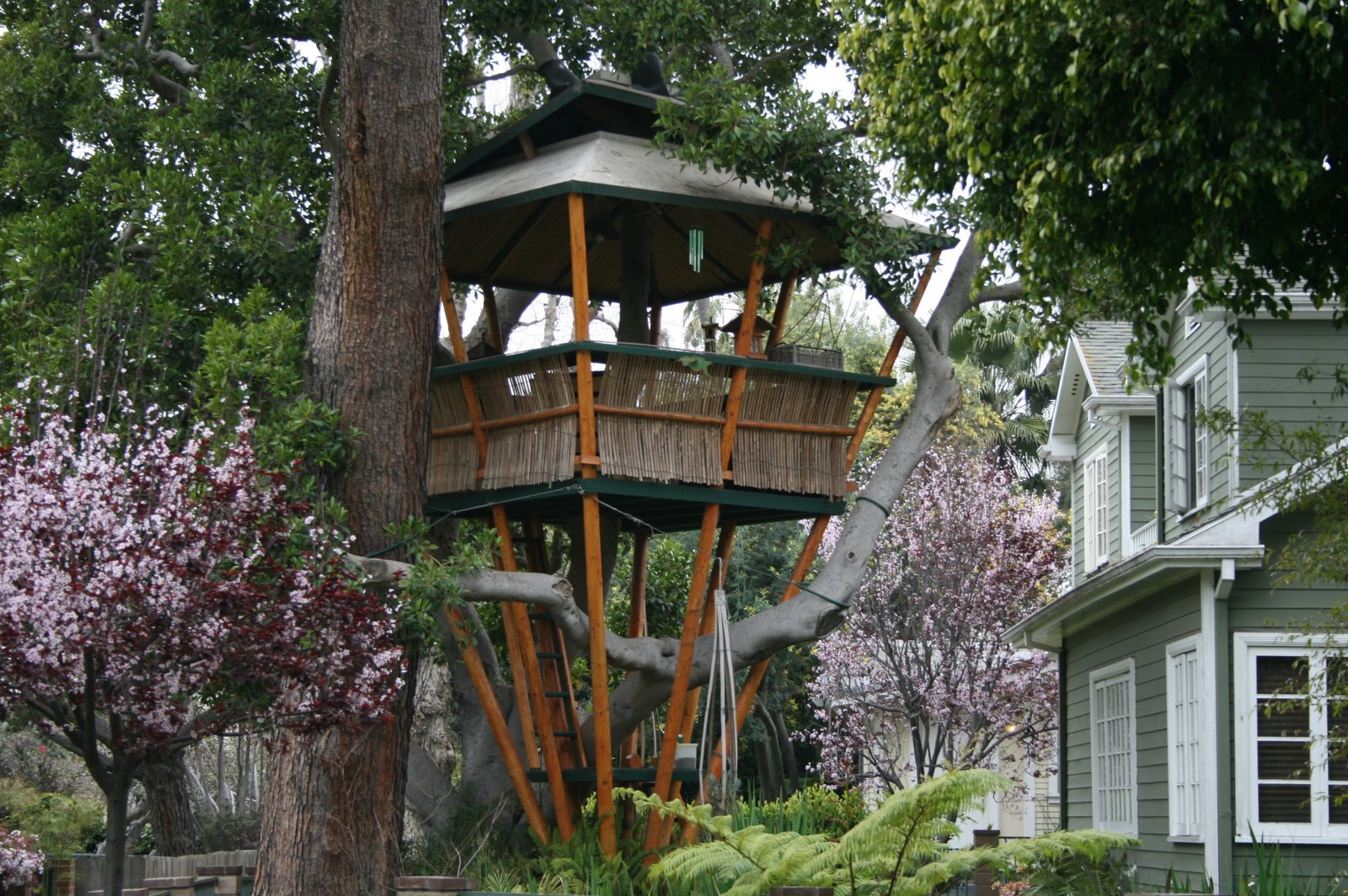 10 best diy tree houses ideas | SEEK DIY Designer Tree Houses Amazing on amazing flowers, crazy houses, amazing hotels, unusual houses, cool houses, tiny houses, strange houses, amazing treehouses of the world, amazing chairs, amazing pools, amazing trucks, amazing kitchens, prettiest houses, goat houses, amazing architecture, amazing bathrooms, fairy houses, awesome houses, amazing treehouse homes, amazing mansions,